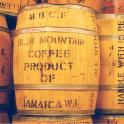 Café Jamaïque BLUE MOUNTAIN barrique grade 1- sachet 250g-