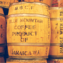 Café Jamaïque BLUE MOUNTAIN barrique grade 1- sachet 100g-