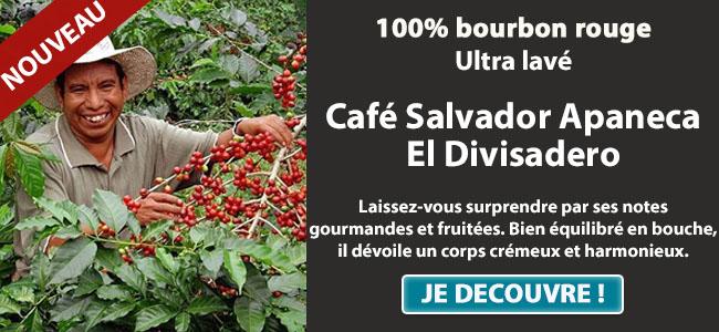 Nouveauté café Salvador Apaneca El Divisadero