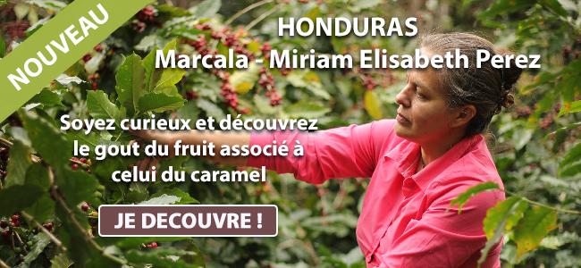 nouveauté café Honduras