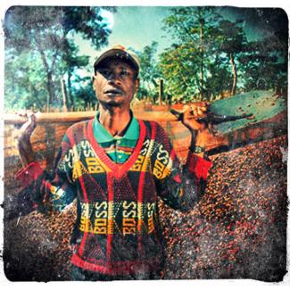Carton 5kg-Cameroun OKU des hauts plateaux