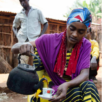 Carton 5kg- Ethiopie NYALA hauts plateaux sidamo